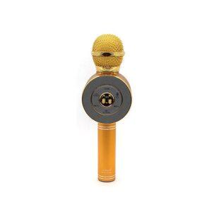 Μικρόφωνο Karaoke - WSTER - WS-668 - Gold - 556233