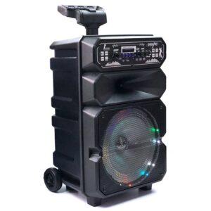 Φορητό ηχείο subwoofer - DS1814 - 676940
